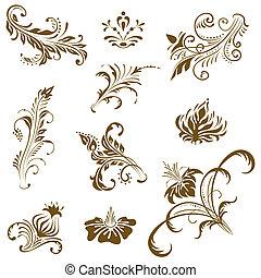 elements., vector, ornament