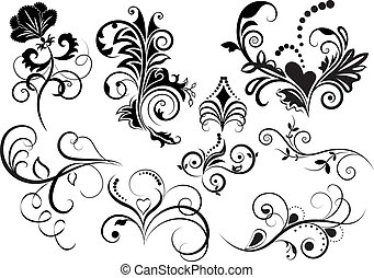 elements., verzameling, ontwerp, floral, black , witte