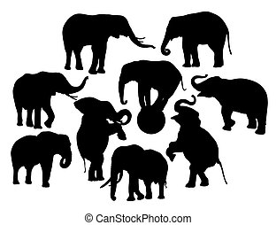 Elephant Activity Silhouettes