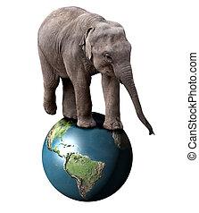 Elephant and Earth