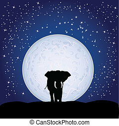 elephant and moonlight