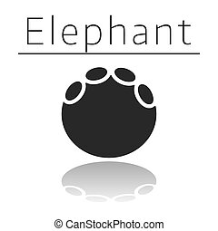 Elephant animal track with name and reflection on white ...
