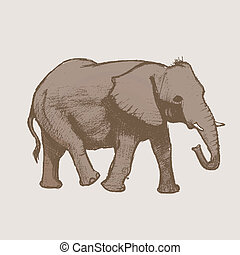 Elephant Art drawing