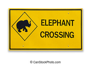 Elephant crossing road sign on white background