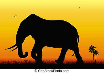 Elephant - Abstract illustration of an elephant