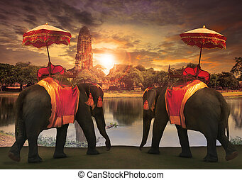 elephant dressing with thai kingdom tradition accessories...