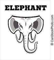 Elephant. Elephant elegant head. Elephant in black and white.