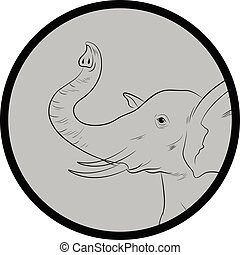 Elephant Face Closeup Vector