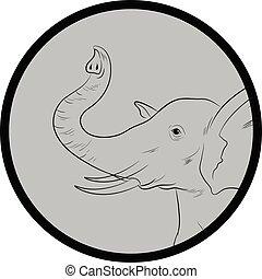 Elephant Face Closeup Vector