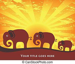 Elephant family at sunrise. - Three elephants at sunrise or...