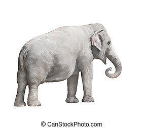 Elephant female watercolor