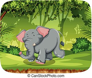 Elephant in woods scene