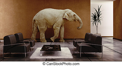 elephant indoor - modern interior with elephant inside (3D...
