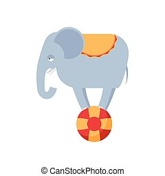 Elephant on ball isolated. Circus animals on white...