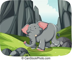 Elephant running in nature scene
