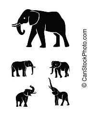 elephant set collection