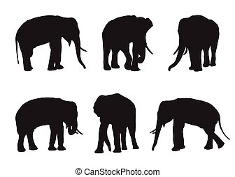 Elephant Set Silhouettes on the white background