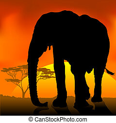Elephant Silhouette Sun