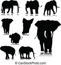 elephant silhouettes