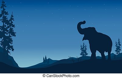 Elephant silhouettes in hill