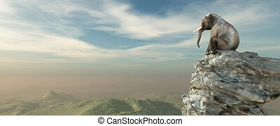 Elephant sitting on edge of a cliff and admiring the...