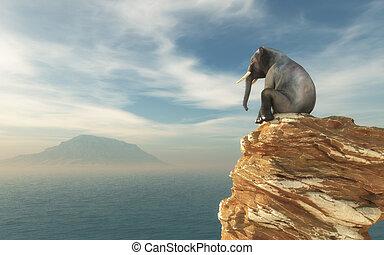 Elephant sitting on edge