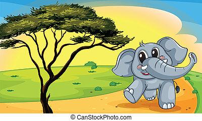 Elephant under a tree