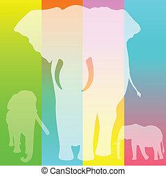 elephant white illustration
