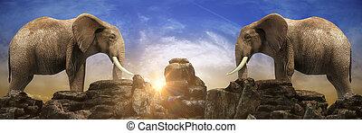 Elephants at sunset. 3d rendering