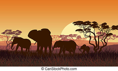 Elephants in African savanna. - Horizontal vector ...