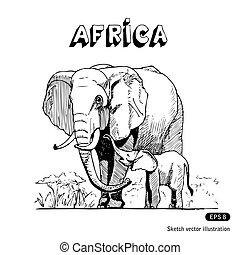 Elephants in African savanna. Hand drawn vector isolated on...