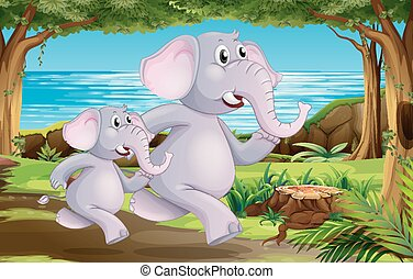 Elephants in nature scene