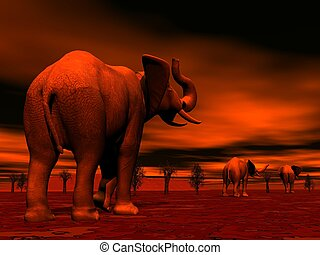 Elephants in the savannah by sunset