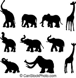 Elephants, mommoth, giraffe - Big wild animals black and...