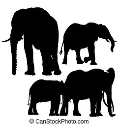 Elephants Silhouettes