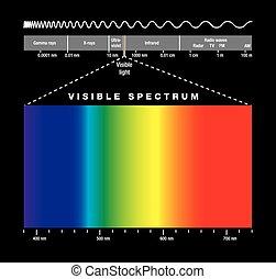 elettromagnetico, spettro, e, visibl
