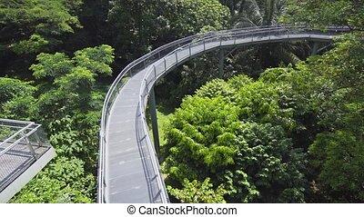 Elevated Catwalk through the Trees at Telok Blangah Hill...