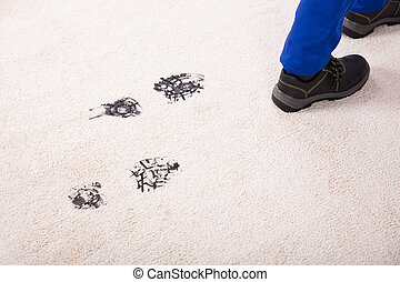 Elevated View Of Muddy Footprint On Carpet - Elevated View...