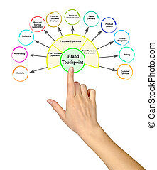 Eleven Brand Touchpoints