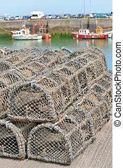 elfog, tenger gyümölcsei, száj, halászati jogok
