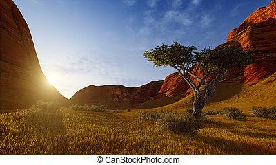 elhagyott, fa, alatt, egy, kanyon, -ban, napkelte, vagy, napnyugta
