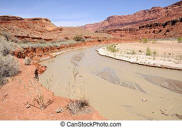 elhagyott, farm, kis erdős völgy, kanyon, folyó, folyó,...