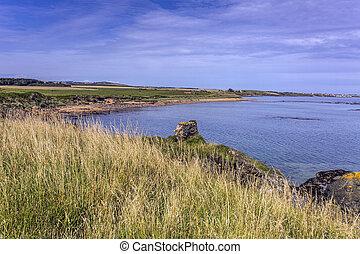 Elie coastline