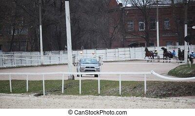 elindít, közül, ló, verseny, képben látható, lóversenypálya,...