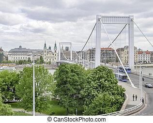Elisabeth Bridge in Budapest - the Elisabeth Bridge across...