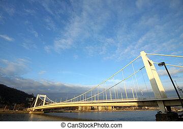 the Elisabeth Bridge in Budapest
