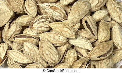 Elite Varieties of Almonds - Front of the camera rotates...