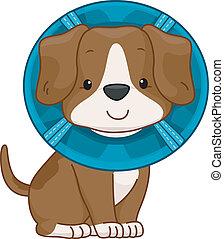 Elizabethan Collar Dog - /Illustration of a Cute Dog Wearing...