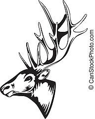 elk head - Vector an illustration of head of an artiodactyl...
