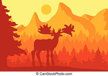 Elk in the morning coniferous forest